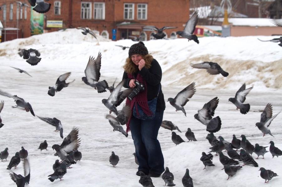 Злобные Русские Птицы