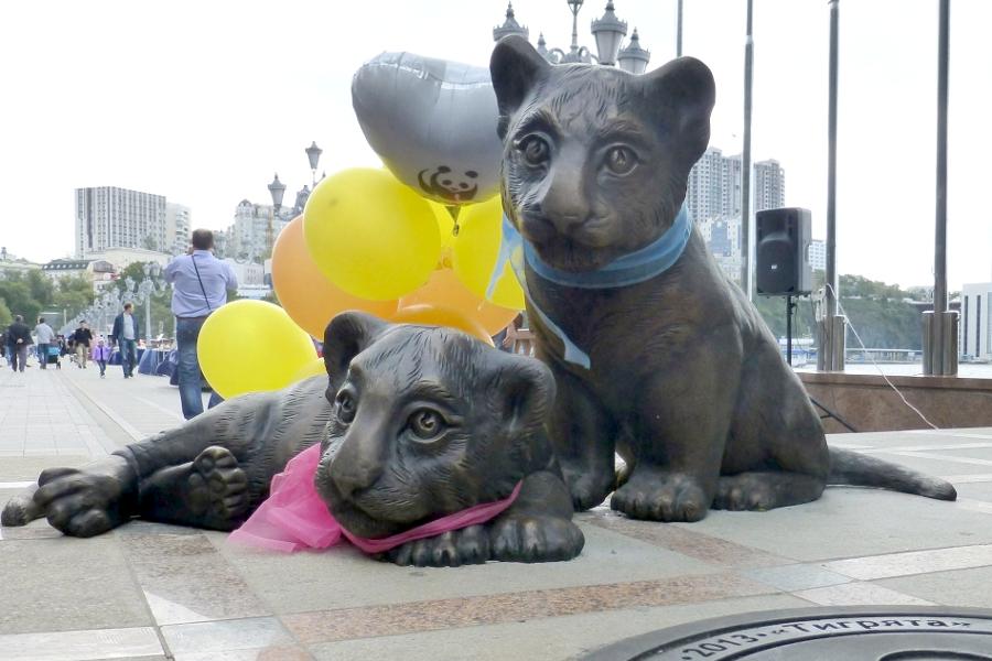 Тигрята из Владивостока