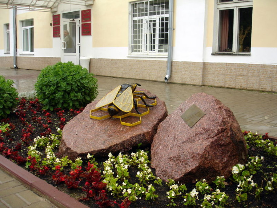 Памятник пчеле в Медыне