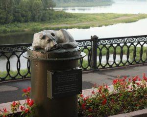 Памятник бездомному псу в Кемерово