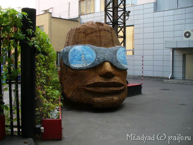 Голова в очках